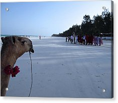 Kenya Wedding On Beach Distance Acrylic Print