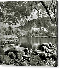 Kern River Park Acrylic Print