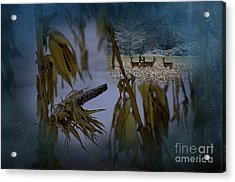 Kernal Acrylic Print by The Stone Age
