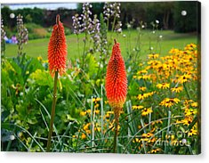 Kew Gardens Acrylic Print