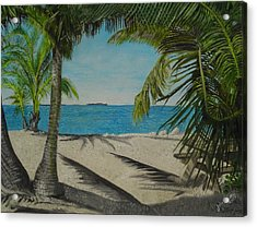 Key West Clearing Acrylic Print by John Schuller
