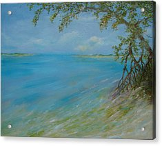 Key West Hanging Out Acrylic Print by Phyllis OShields