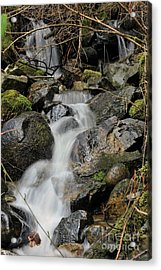 Acrylic Print featuring the photograph Keystone by Rod Wiens