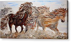 Kicking Up Dust Acrylic Print by Eloise Schneider