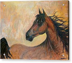 Kiger Mustang Acrylic Print by Ben Kiger