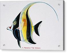 Kihikihi Acrylic Print