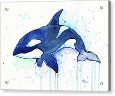Kiler Whale Watercolor Orca  Acrylic Print