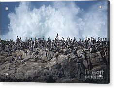 Kinda Crowded Acrylic Print by Stan and Anne Foster