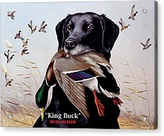 King Buck - 1959-60 Federal Migratory Waterfowl Stamp Artwork Acrylic Print
