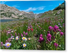 Acrylic Print featuring the photograph King Lake Summer Landscape by Cascade Colors