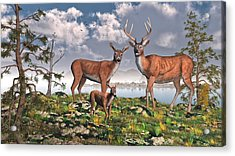 King Of The Mountain Acrylic Print by Mary Almond