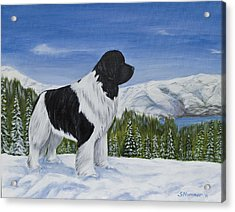 Acrylic Print featuring the painting King Of The Mountain by Sharon Nummer
