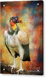Acrylic Print featuring the mixed media King Vulture by Eva Lechner