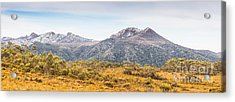 King William Range. Australia Mountain Panorama Acrylic Print