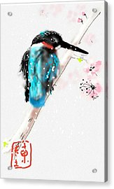Kingfisher In Late Spring Snow Acrylic Print