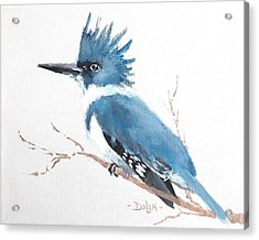 Kingfisher On A Branch Acrylic Print