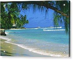 King's Beach, Barbados Acrylic Print