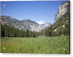 King's Meadow Acrylic Print by Rick Pham