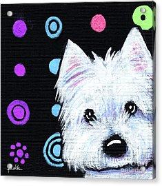 Kiniart Disco Westie Acrylic Print by Kim Niles