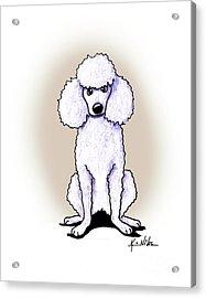 Kiniart White Poodle Acrylic Print by Kim Niles