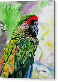 Kiowa Acrylic Print