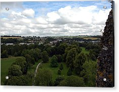 Acrylic Print featuring the photograph Kiss The Blarney Stone by Dianne Levy