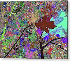 Kiss To The Sky In Fall Acrylic Print by Kenneth James