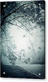 Kissed By Mist Acrylic Print by Maggie Terlecki
