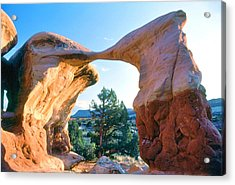 Kissing Birds Rock Formation Acrylic Print