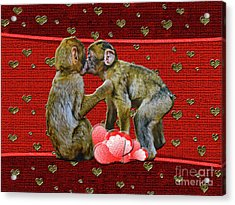 Kissing Chimpanzees Hearts Acrylic Print