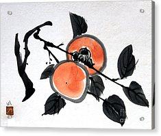 Kissing Persimmons Acrylic Print