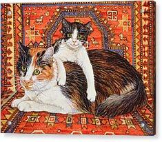 Kit Cat Carpet Acrylic Print by Ditz
