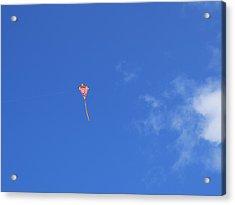 Kite Flying  Acrylic Print by Carol McCutcheon