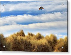 Acrylic Print featuring the photograph Kite Over The Hill by James Eddy