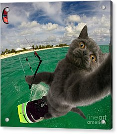 Kite Surfing Cat Selfie Acrylic Print