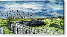 Kites Galore Acrylic Print