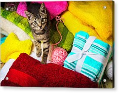 Kitten Among Bath Towels Acrylic Print