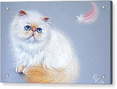 Kitten And Feather 2 Acrylic Print by Elena Kolotusha