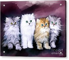 Kitten Family Acrylic Print by Melanie D