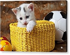 Kitten In Yellow Basket Acrylic Print