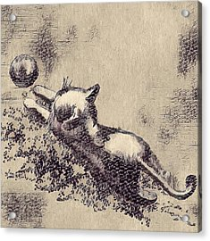Kitten Playing With Ball Acrylic Print