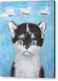 Kitten With Three Clouds Acrylic Print