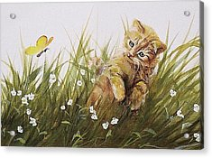 Kitty And Butterfly Acrylic Print