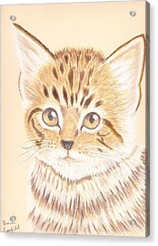 Kitty Acrylic Print