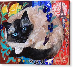 Kitty Goes To Paris Acrylic Print