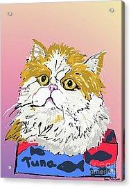 Kitty In Tuna Can Acrylic Print