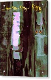 Kitty-kitty-kitty Acrylic Print