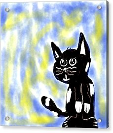 Kitty Kitty Acrylic Print