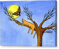 Kitty Moth And Moonlight Acrylic Print by Norma Appleton