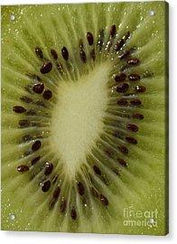 Kiwi Macro Acrylic Print